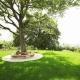 Profitipps für einen perfekten Rasen- Fautz die Gärten